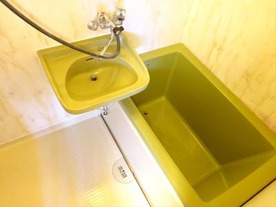 【浴室】ペイズリーパーク