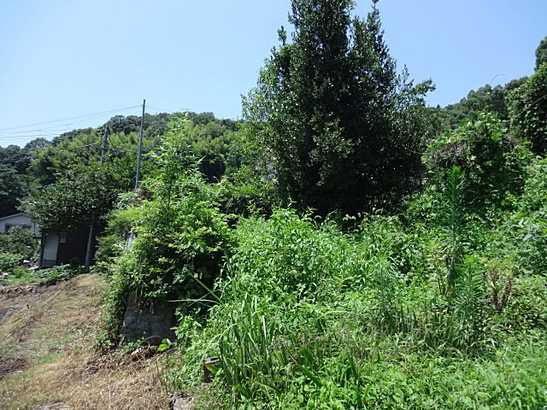 緑豊かな環境でのびのびスローライフを送れます。