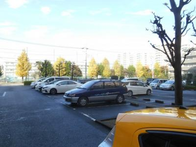【駐車場】豊栄浦和常盤マンション 304号室