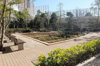 パークタワー東雲 BBQ広場・家庭菜園