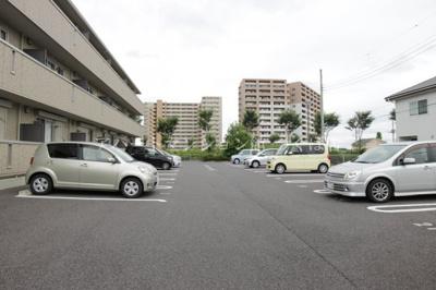 【駐車場】conifer(コニファー)