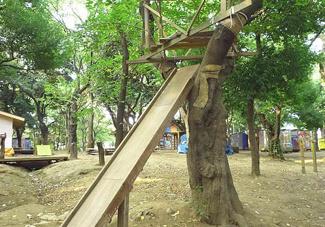 羽根木公園