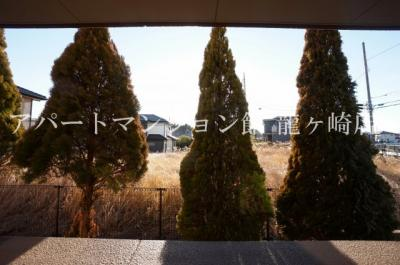 【展望】プラムローズ