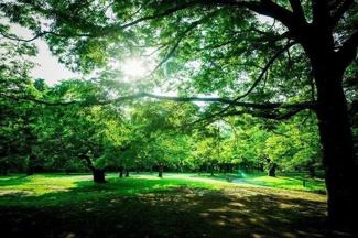 「サンクタス代々木ヒルズ 102」 代々木公園