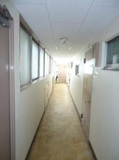 渋谷区代々木 リノベーションマンション 「西参道マンション 602」 廊下部分