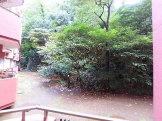 港区赤坂 リノベーションマンション チュリス氷川坂 現地写真