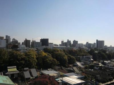 【展望】ベルク夕陽ヶ丘II