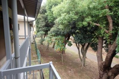 廊下側は千葉公園に面しています