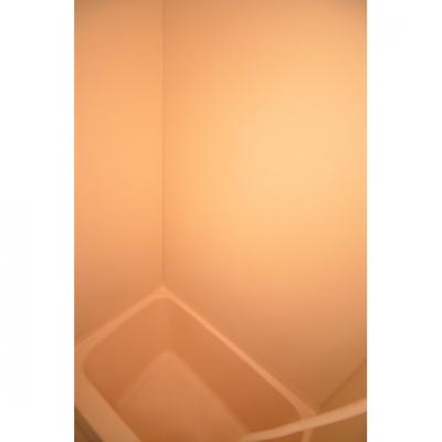 【浴室】アネックスカサハラ天神南