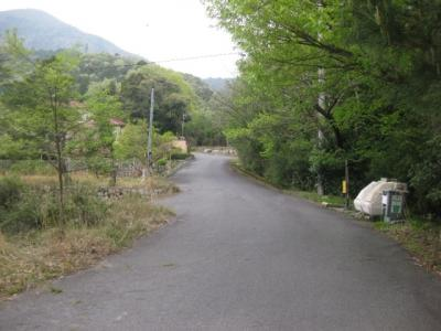 敷地への途中道路