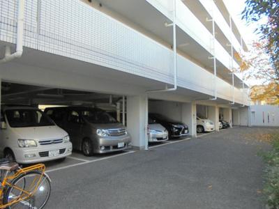 【駐車場】セゾンアルビレオ
