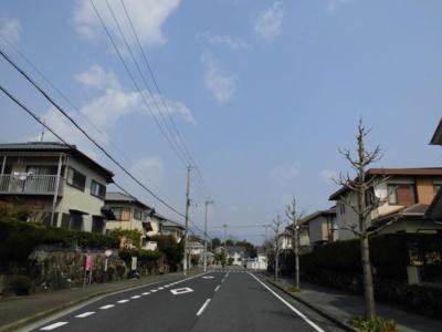 西側前面道路(幅員約16m)