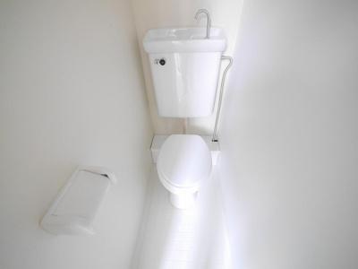【トイレ】ステラヴィラ