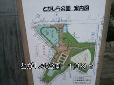 【周辺】シャンボア 4