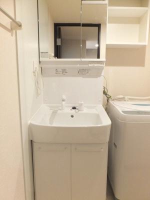 同タイプ室内・独立洗面台、洗濯機付き
