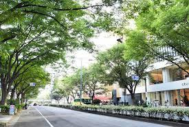 渋谷区渋谷1丁目 マンション 青山セブンハイツ 表参道 綺麗な通りです