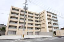 学生会館ドーミー東大阪の画像
