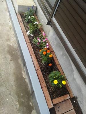 車スペースに花壇があります。お好きなお花を植えてください。