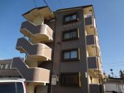 マンションアリーナ・ピアの画像