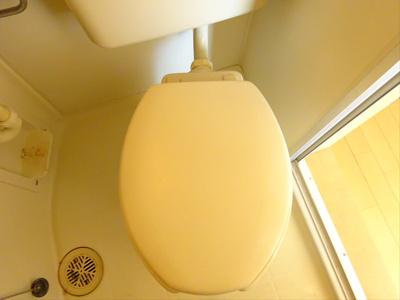 【トイレ】ウィンズ笹塚