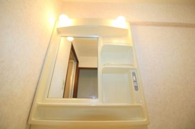 【独立洗面台】グリーンコーポ