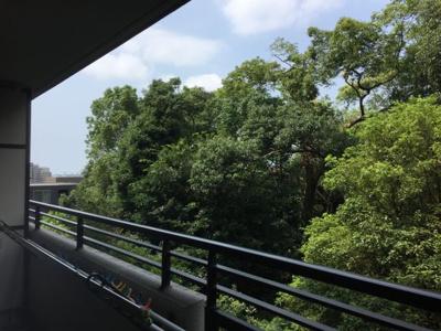 4階は阿保親王塚の緑と空のコントラストが美しく見えます。