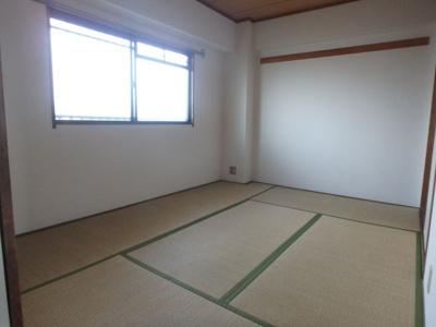 【和室】シロハイヌ小阪