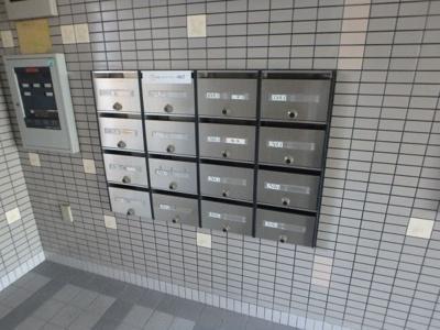 【その他共用部分】シロハイヌ小阪