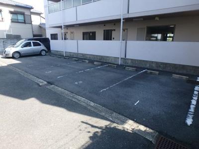 【駐車場】シロハイヌ小阪