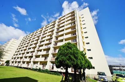 総戸数245戸の大規模団地の10階部分です。