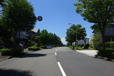 歩道が整備されているので、ジョギングや散歩にも最適です。