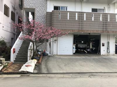 桜の木から2台分が駐車スペース