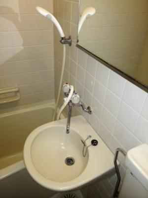 浴室内 洗面ボール 広い鏡があり便利
