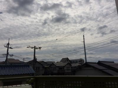 【展望】千鳥が丘エヌズ