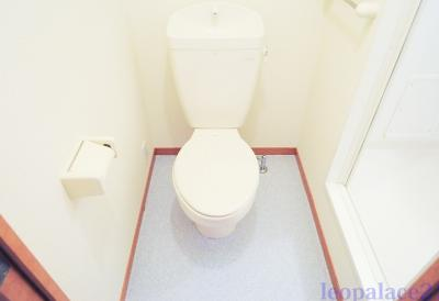 バストイレ別。 同タイプ室内