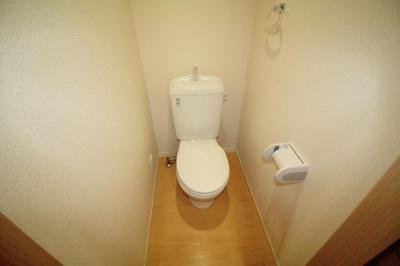【トイレ】ジプソフィラ
