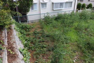 【外観】神戸市東灘区森北町6丁目売り土地