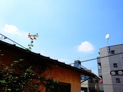 【展望】AUN浜田山