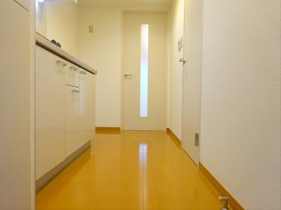 【玄関】DSマンション