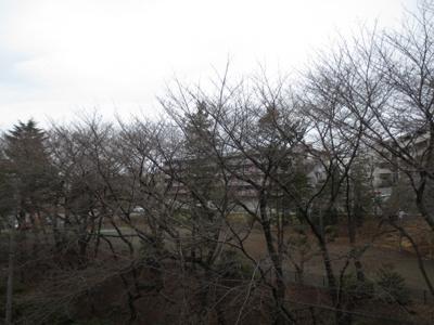 【展望】ベルデュール宮前平