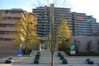 平成22年建築 周辺環境・共用施設が充実!