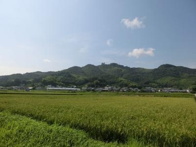 近くには田畑が、三宝山も遠くに見え自然の豊かさを感じます。