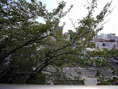 バルコニーからの眺望・南東向き・陽当たり良好です。
