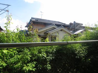 【展望】エバグリーン スモッティー阪急茨木店