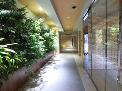 光と緑のアートレジデンスをコンセプトにした「セルアージュマンション」。エントランスには壁面緑化が爽やかな空間を演出します。