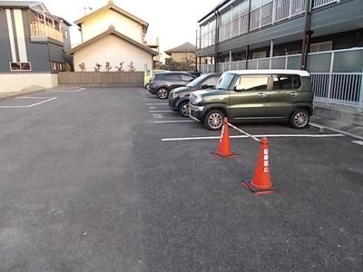 【駐車場】サープラスツー野菊(サープラスⅡ野菊)