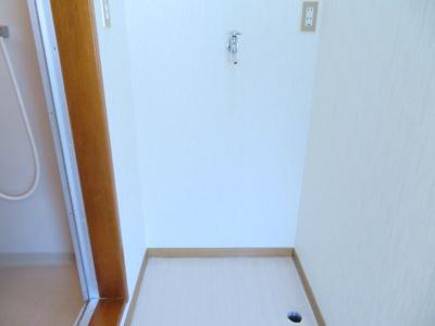 室内洗濯機置場(同タイプ別室の写真です)