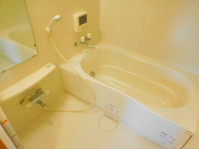 【浴室】アムールカセイ