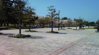 浜寺公園 毎日お散歩できる大きな浜寺公園まで徒歩で行けますよ 子供たちは夏の浜寺プールが楽しみですね。