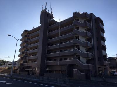 プリムローズいずみ 7階建の鉄筋コンクリート造マンションです